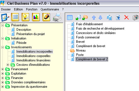 Les postes d'investissements de Ciel Business Plan 2007
