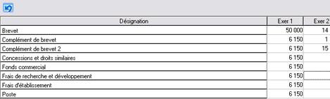Les postes présentés sous forme de tableau dans Ciel Business Plan 2007