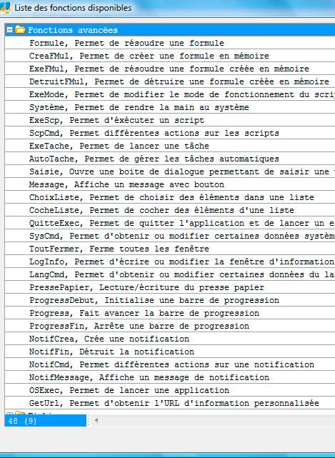 les fonctions avancées de scripting d'un logiciel Ciel Evolution 2008