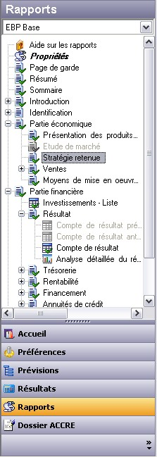 La structure du rapport d'EBP Business Plan 2007